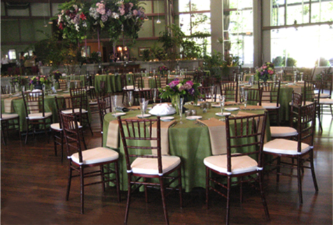 Chiavari Chairs for Rental or Wholesale Purchase